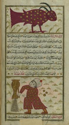 Muhammad_ibn_Muhammad_Shakir_Ruzmah-'i_Nathani_-_Capricorn_and_Aquarius_-_Walters_W65924B_-_Full_Page