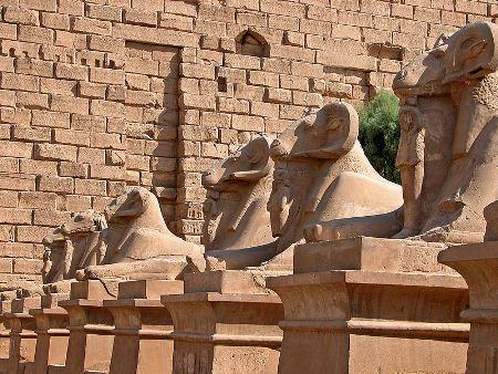 - karnak-ram-sphinxes-by-dennis-jarvis